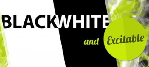 whitespring sensation roermond